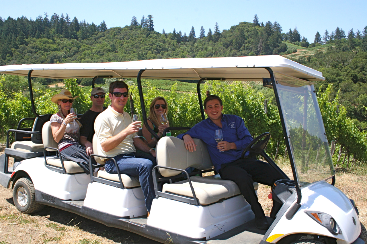 Vineyard tour at Michel-Schlumberger Wine Estate